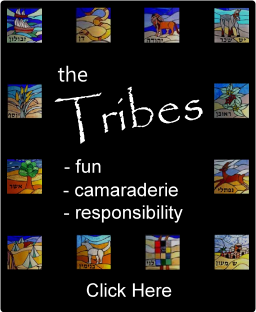 Tribes Info
